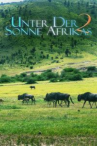走进非洲2友谊地久天长