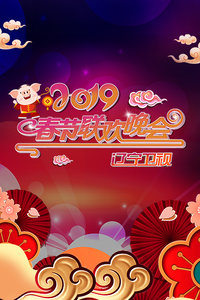 辽宁卫视春节联欢晚会 2019