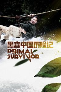 黑森中国历险记海报