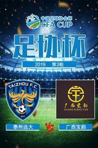 2019足协杯 第3轮 泰州远大VS广西宝韵