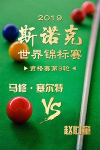 2019斯诺克世界锦标赛 资格赛第3轮 马修·塞尔特VS赵心童