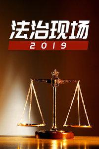 法治现场 2019