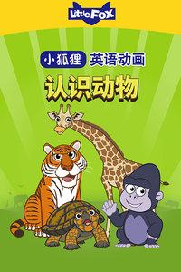 LittlleFox英语动画 认识动物