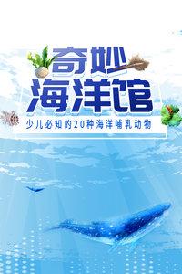 奇妙海洋馆 少儿必知的20种海洋哺乳动物