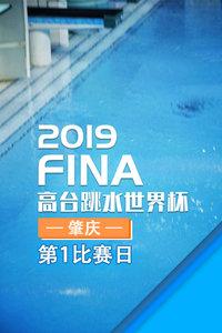 2019FINA高台跳水世界杯 肇庆 第1比赛日