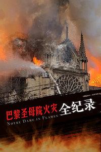 巴黎圣母院火灾全记录