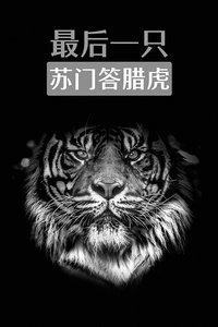 最后一只苏门答腊虎
