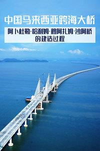 中国马来西亚跨海大桥-阿卜杜勒·哈利姆·穆阿扎姆·沙阿桥的建造过程