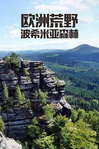 欧洲荒野:波希米亚森林