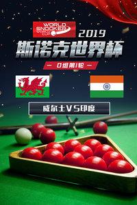 2019斯诺克世界杯 D组第1轮 威尔士VS印度