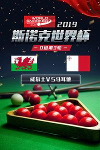 2019斯诺克世界杯 D组第3轮 威尔士VS马耳他