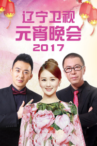 辽宁卫视元宵晚会 2017