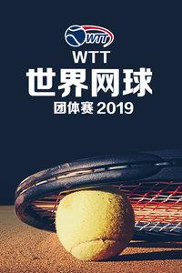 2019 WTT世界网球团体赛