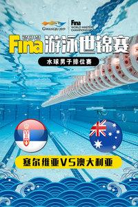 2019 FINA游泳世锦赛 水球男子排位赛 塞尔维亚VS澳大利亚