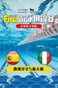 2019 FINA游泳世锦赛 水球男子决赛 西班牙VS意大利