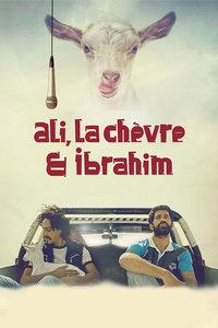 阿里,山羊与阿伯拉希姆