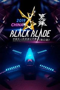 2019黑锋中国无人机竞速公开赛 海口站