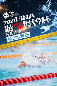 2019 FINA游泳世界杯 新加坡站 第3比赛日