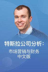特斯拉公司分析:市场营销与财务 中文版