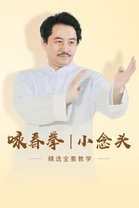 咏春拳 小念头 精选全套教学