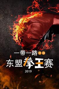 2019一带一路中国-东盟拳王赛
