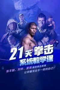21天拳击系统教学课