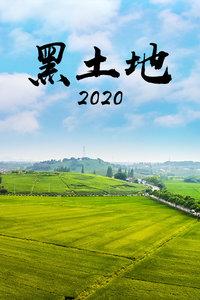 黑土地 2020