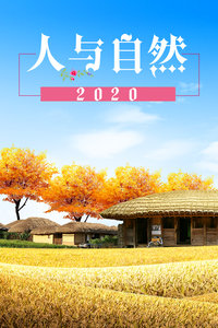 人与自然 2020