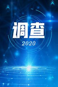 调查 2020