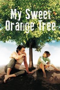 我亲爱的甜橙树