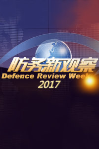 防务新观察 2017