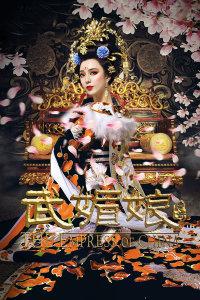 武媚娘传奇 DVD版