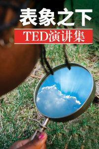 TED演讲集:表象之下