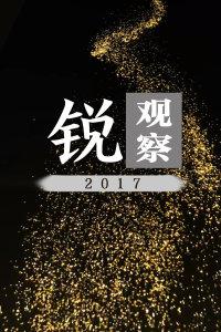 锐观察 2017