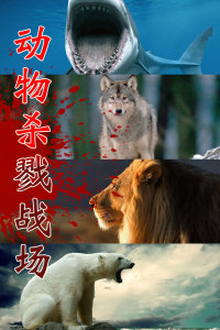 动物杀戮战场