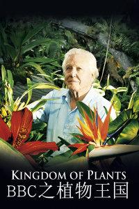 BBC之植物王国