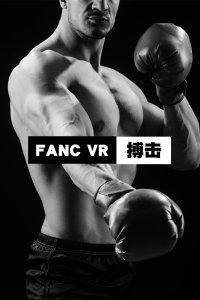 FANC VR搏击