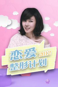 恋爱整形计划 2012