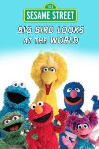大鸟看世界