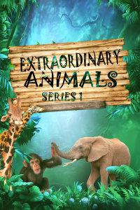 非凡动物 第一季