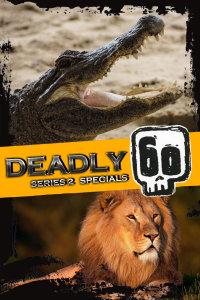 致命的60种生物 第二季 特别节目
