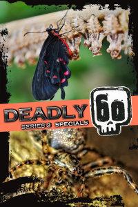 致命的60种生物 第三季 特别节目