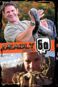 致命的60种生物 第三季
