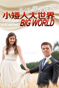 小矮人大世界:婚礼农场第2季