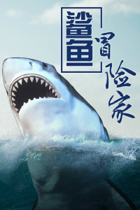 鲨鱼冒险家
