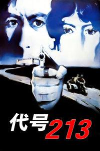 代号213