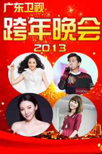 广东卫视跨年晚会 2013