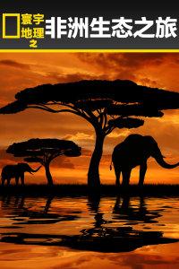 寰宇地理之非洲生态之旅