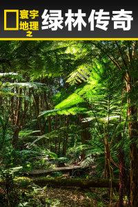 寰宇地理之绿林传奇