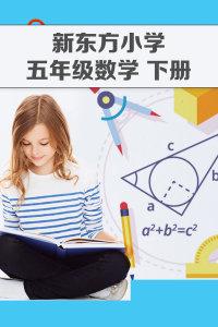新东方小学五年级数学 下册